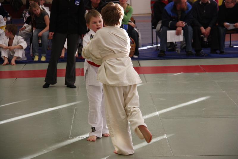 Judo Vyökoevaatimukset